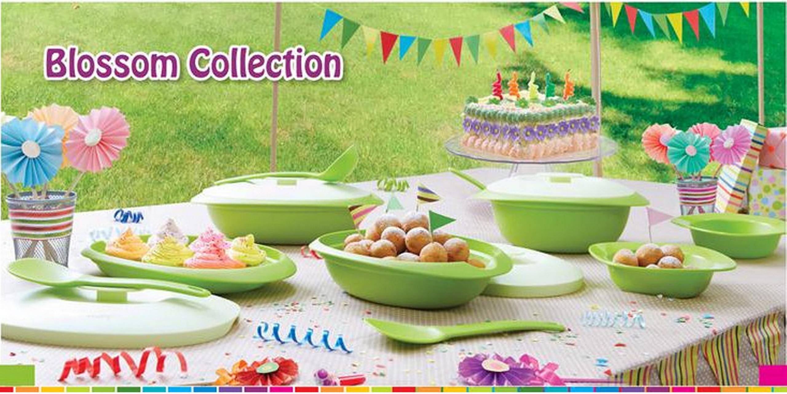 http://freetupperware.files.wordpress.com/2013/08/tupperware-blossom-collection.jpg